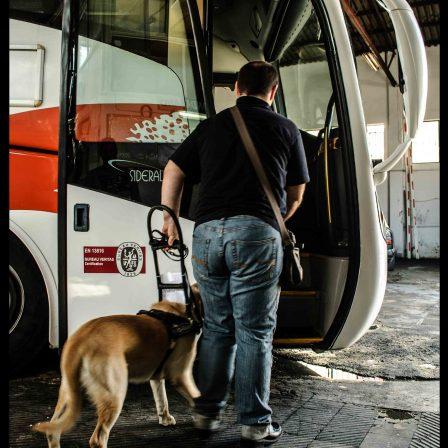 entrando-bus