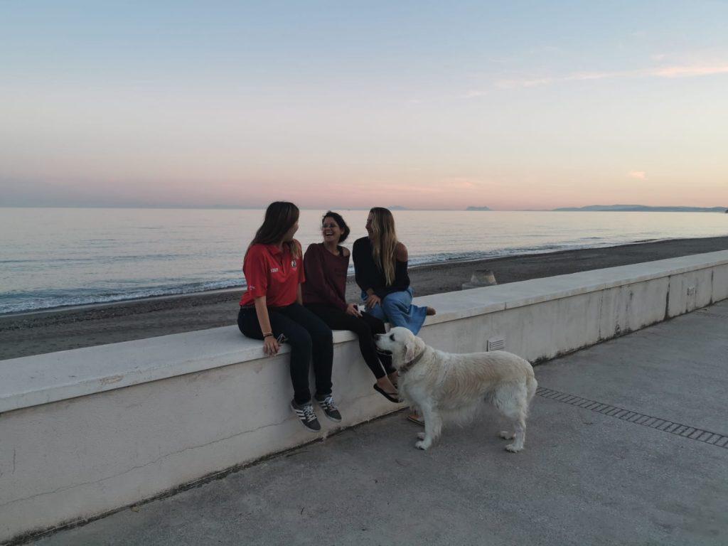 Golden atento junto a un grupo de mujeres, educación del perro