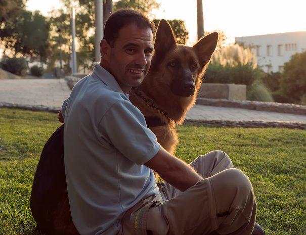 Perro obediente con dueño
